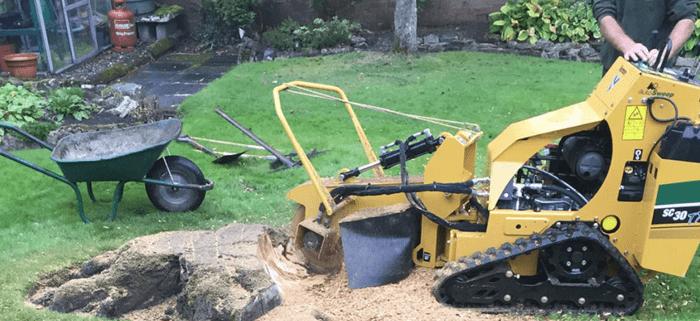 Tree Surgeon Stump Removal Tree Removal Hedge Work 13