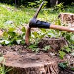 Tree Surgeon Stump Removal Tree Removal Hedge Work 19