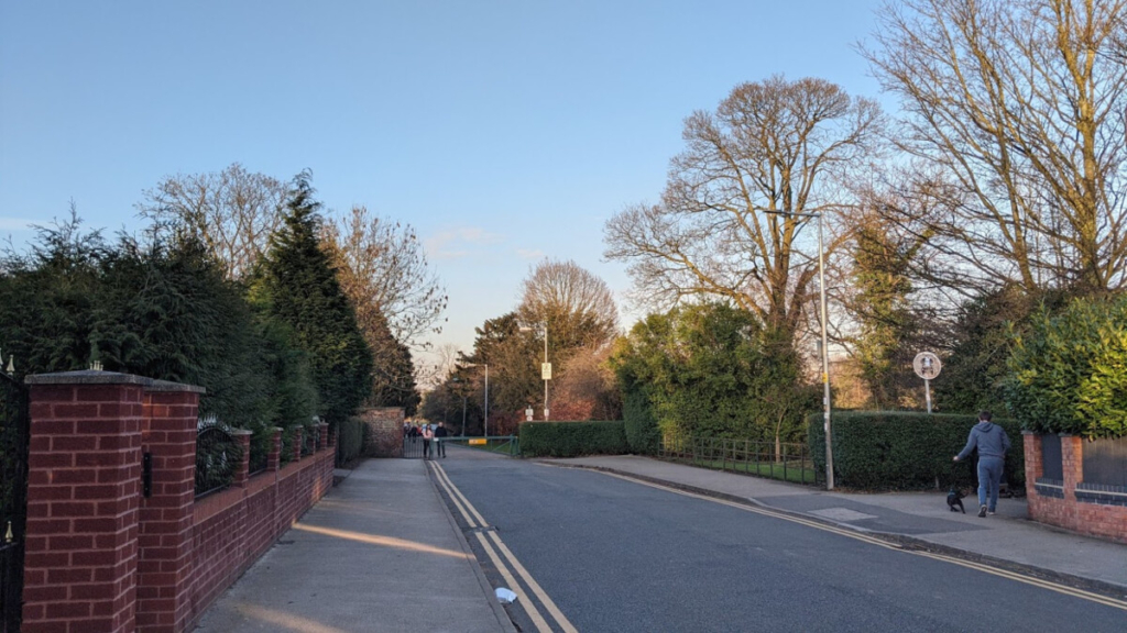 Tree work Rochdale